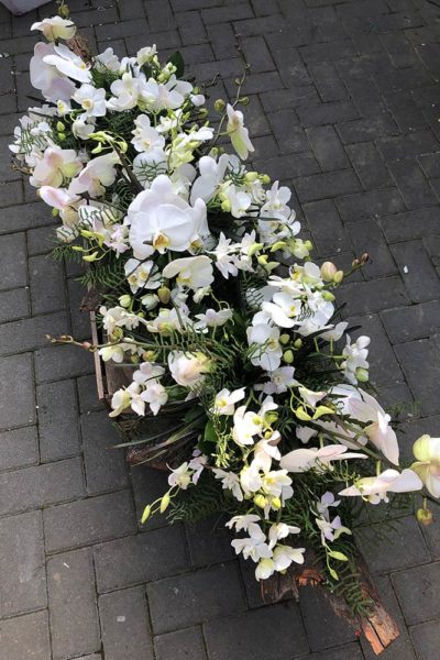 Funeral tribute floral spray with orchids